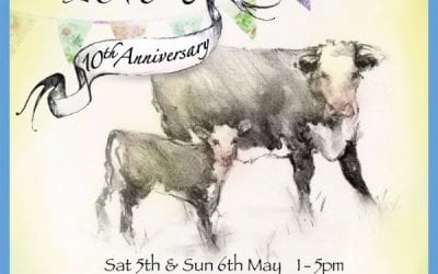 Amberley Cow Hunt.. celebrating 10 years!